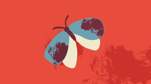 Adobe Illustrator : Vector brushes and illustrations