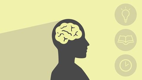Estratégias de Estudo: Produtividade, Concentração e Memória