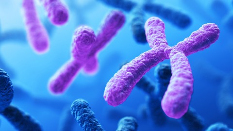 Genetics for Beginners: The Videocourse