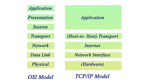 TCP/IP Reference Model: Layers and Protocols