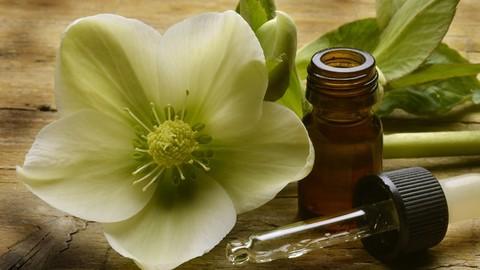 Terapia com Florais de Bach