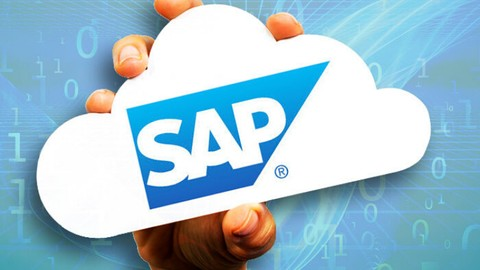 SAP HANA Simple Finances Implementation, Modeling & Reports