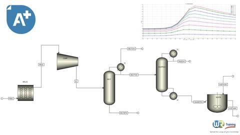 Aspen Plus V11 : Chemical Reactors