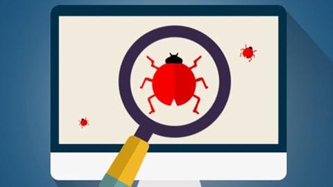 Web Application Hacking /Penetration Testing & Bug Bounty