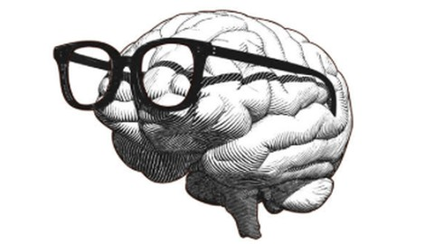 Neuroscience Methodologies To Rewire Your Brain