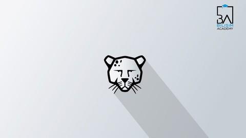 GNU/Linux Pardus İşletim Sistemi Eğitimi (Temel Seviye)