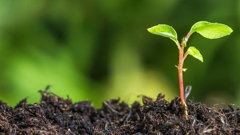 Introduction to Basics of Soil Science Complete Course