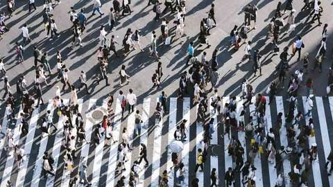 Sumber Daya Manusia: Rekrutmen hingga Terminasi