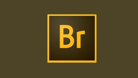 Adobe Bridge para fotógrafos e filmmakers