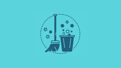 Negócio de House Cleaning nos EUA: do Zero ao Sucesso