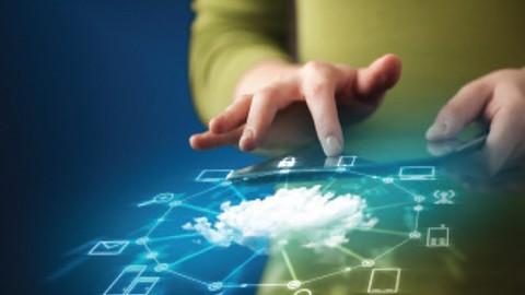 CompTIA JK0-019 E2C Installing Network Configuration Exam