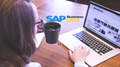 SAP BUSINESS ONE - Soporte Técnico en los Procesos