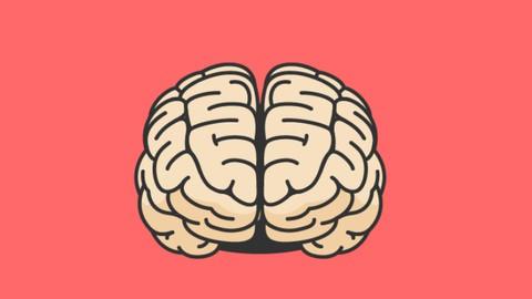 Neurociência No Dia a Dia