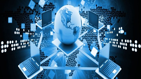 CRiSC Risk Management Information Systems Practice Test