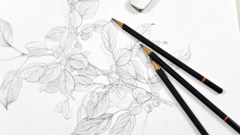 How To Draw With Pencils