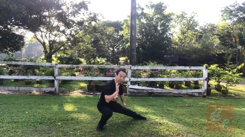 Authentic Fighting Tai Chi-Chen New Frame Routine (XinJia) 1