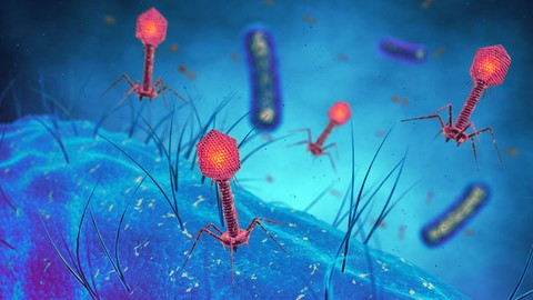 Infectious Disease: Virology