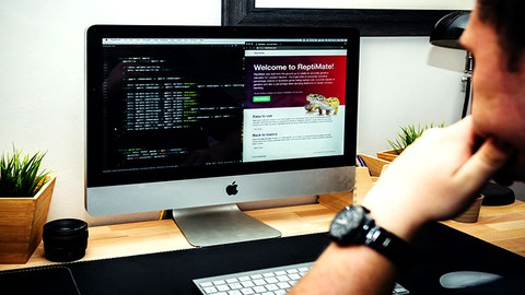 Build A Modern Professional Website Using Only HTML And CSS