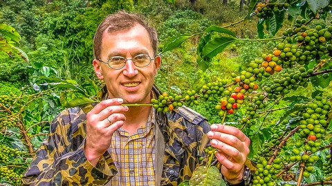SECRETS of COFFEE. Part 2. BOTANY (Coffee Expert in 4 hours)