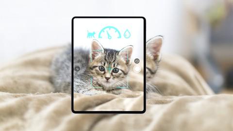 忙しい人のための0から学べるAI開発:Googleアカウントだけで始められる画像分類アプリを試そう!