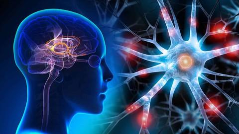 Beyninize Hükmedin -Hayatta Her Alanda Başarılı Olmanın Yolu