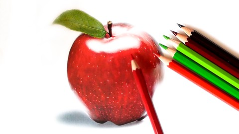 Technical Drawing,  APPLE