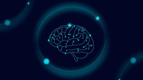 Whole Brain Development Training