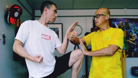Wing Chun Chi Sao Sticky Hand Technique Ip Man Lineage