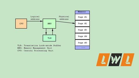 Memory Management in Linux Kernel