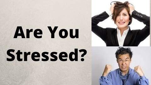 Stress Management Blueprint-Master Stress, Anxiety, Fear