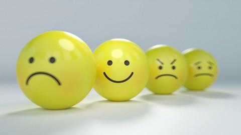 Regulación emocional. Teoría e Intervenciones.