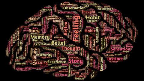 Psychologie für Anfänger und Fortgeschrittene