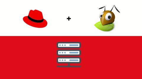 Almacenamiento Linux para RHCSA y RHCE - v8