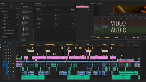 PremierePro 2020   Introduction to professional editing