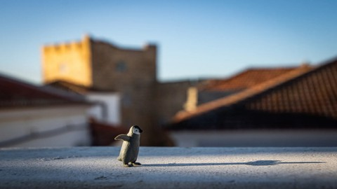 Integre Linux ao Microsoft Active Directory