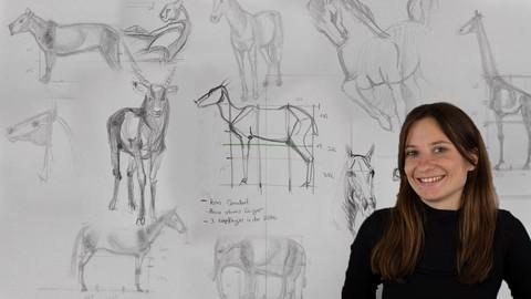 Die Kunst Tiere zu zeichnen - Zeichnen für Beginner