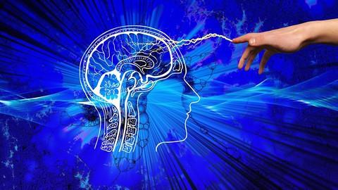 Neuro-linguistic Programming - Orientation Course