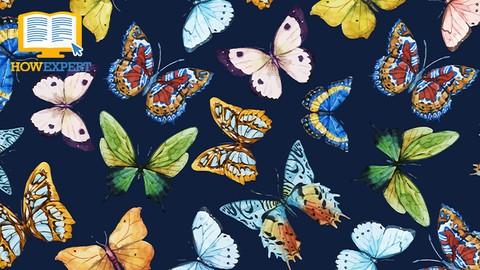 HowExpert Guide to Butterflies