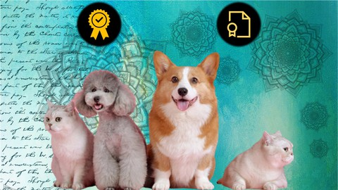 Fully Accredited Animal Reiki Practitioner Certification