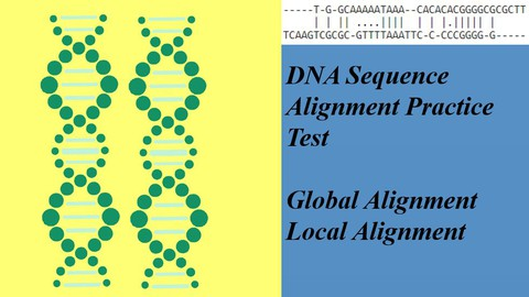 DNA Sequence Alignment Practice Exercise/Test