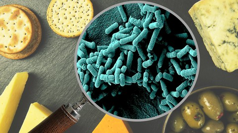 Food Bioprocess Science