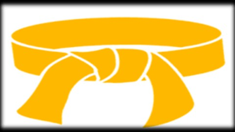 LSSYB Lean Six Sigma Yellow Belt Practice Exams