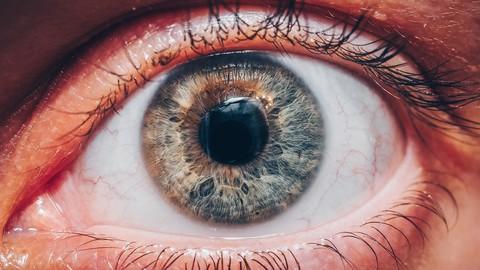 Learn to evaluate wellness through the iris (iridology)