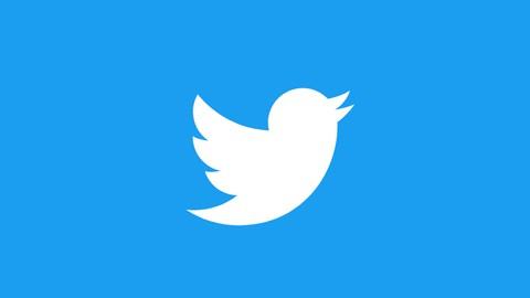 Twitter Marketing & Werbeanzeigen: Twitter Komplettkurs
