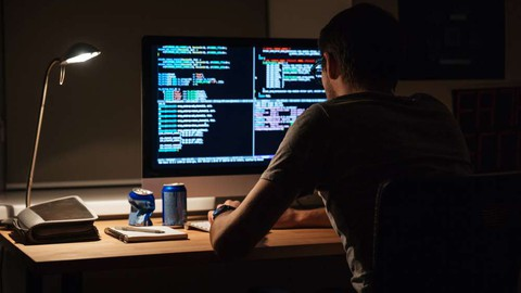Desenvolvedor de Sistemas WEB