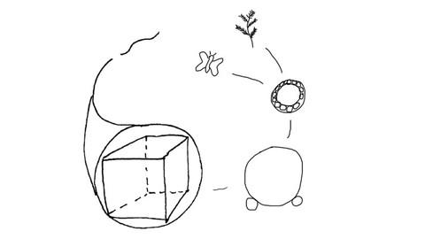 Ciencias y Matematicas Simplificadas