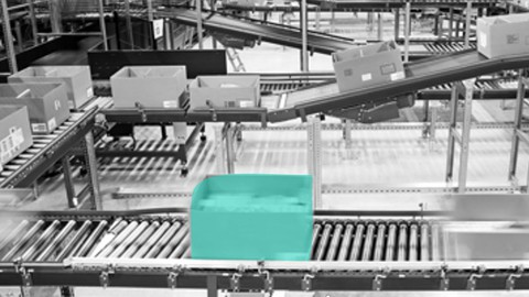 SAP Extended Warehouse Management - Material Flow Systems