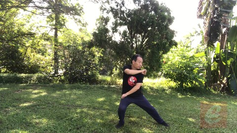 Sparring Tai Chi-Chen New Frame Routine XinJia 2 for Fitness