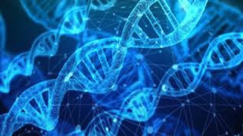 Basics of Molecular Genetics and Molecular Biology