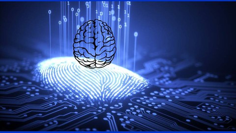 The beginners course to understand The Brain Design
